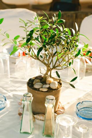sheila-jacques-wedding-33